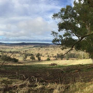 Social Media Matters road trip Walcha NSW